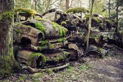 I am emotional about engines, if you hurt my car, you hurt my heart. (MGness / urbexery.com) Tags: abandonedplaces lostplaces rotten decay lostplace abandones lost vergessen autofriedhof cars rust forgotten cargraveyard volvo car abandoned lake see