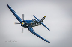 Corsair Left Turn (tclaud2002) Tags: plane airplane aircfraft prop propeller f4u corsair f4ucorsair aviation fighter vintage worldwartwo wwii airshow stuartairshow 2018stuartairshow florida usa fly flying inflight airborn airborne airbourne pilot canopy navy
