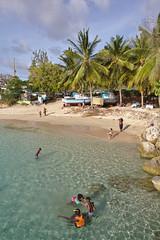 IMG_1529-a (Jennika Argent) Tags: jennikaargent barbados caribbean west indies