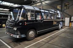 Oldtimer Scania Vabis Bus Beuk Reizen NL