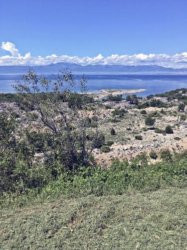 Croatian Landscape 195
