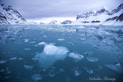 Arctic Ice (Nicholas Ferrary) Tags: nicholasferrary nature nikon nikond800e nikond810 d800e d810 nikon1424mm28 nikon1424mm 24120 nikon24120mm arctic arcticcircle arcticwildlife svalbard landscape landscapephotography sea seascape naturaleza naturephotography naturereserve naturalhistory nationalpark sealife ice icesheets iceberg glacier glacialice snow snowfall