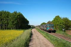 ALn 668 3206 (Enrico Bavestrello) Tags: aln668 aln6683206 trenord trenitalia ferrovia ferrovie trains treni trainspotting train lomello lombardia italia italy zug regionale aln668xmpr aln668trenord aln668trenitalia nikon nikond750