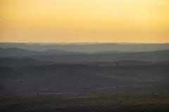 Holy Cow (Tony Hochstetler) Tags: d850 nikon nikon300mmf4 wyoming sheridan landscape vista horizontal deer