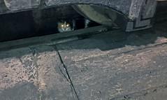Beady Eyes (craigsanders429) Tags: cat roundhouse wheels steamlocomotives cleveland reading2100 readingt1no2100