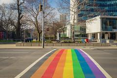 Rainbow in front of Hamilton's City Hall (A Great Capture) Tags: cityhall prideflag spring street city lbgtq lgbt canada ontario hamilton crossing crosswalk sidewalk rainbow