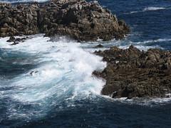 IMG_8730 (jesust793) Tags: mar sea olas waves rocas rocks