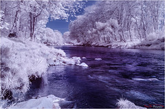 River Don IR II_8707 (The Terry Eve Archive) Tags: scenicsnotjustlandscapes riverdon river aberdeenshire infrared channelswitch