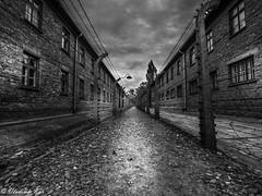 Auschwitz, the blocks (vladimir78F) Tags: blocks auschwitz exterminationcamp monochrome concentrationcamps blackwhite
