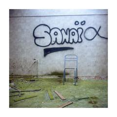 (Oeil de chat) Tags: couleur pellicule film argentique kodak portra semflex berthiot 120 mf moyenformat mediumformat carré urbex explorationurbaine graff graffiti chaise abandonné
