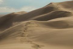 The Great Sand Dunes (Explored) (Rigsby'sUniquePhotography) Tags: colorado sanddunes greatsanddunesnationalpark nationalparkservice usinterior magazine landscape canon teamcanon canonusa sandisk aaronrigsby hiking rei optoutside backpacking earth nature