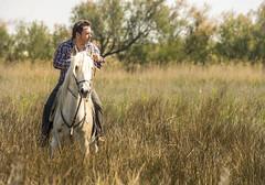 L'Abrivado (Henri Aubron) Tags: camargue chevau cheveaux horses taureaux abrivado biou chevaux henri aubron aigues mortes arles nimes gardian manadier occitanie cavalcade chevauchée