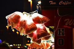 Seaside Scenes, Blackpool 23/02/2019 (Gary S. Crutchley) Tags: north pier blackpool tram seafront esplanade promenade golden mile seaside sea side transport public uk great britain england united kingdom nikon d800 history heritage illuminations travel ocean seascape coast coastal marine lancashire fylde candy floss candyfloss cotton