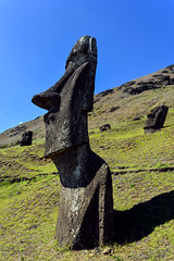Moai gazing towards the sea, Easter Island (David D Moore) Tags: easterisland rapanui isladepascua moai ahutongariki ranoraraku anakena ahuakivi theseven birdmancult birdman birdmen orongo ahutahai koteriku tahai vaiure ranokau polynesia chile