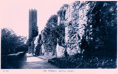 Battle Abbey - The Terrace (pepandtim) Tags: postcard old early nostalgia nostalgic battle abbey terrace sussex co earl street hastings printed great britain glossy real photograph 33ter53