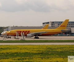 DHL (EAT Leipzig) A300B4-622RF D-AEAA at FRA/EDDF (AviationEagle32) Tags: frankfurtairport fra eddf flughafenfrankfurt germany deutschland airport aircraft airplanes apron aviation aeroplanes avp aviationphotography avgeek aviationlovers aviationgeek aeroplane airplane airbus planespotting planes plane flying flickraviation flight vehicle tarmac dhl eatleipzig dhlaviation airbus300 a300 a300b4622rf a300600f a300b4600rf a300b4600f a300b4 daeaa
