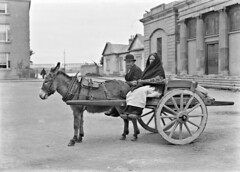 Only the donkey knows how to pose! (National Library of Ireland on The Commons) Tags: eason easonson easoncollection easonphotographiccollection glassnegative 20thcentury nationallibraryofireland goingtomarket man woman donkeyandcart xgerald galway countygalway courthousesquare courthouse locationidentified fordasscart townhall