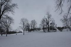 Tähtitorninmäki 9 (sohvimus) Tags: helsinki helsingfors talvi lumi sneeuw suomi finland snow vinter snö winter hiver tähtitorninmäki ullanlinna ulrikasborg tähtitorninvuori