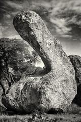 Phallic Rock Formation (Robert_Brown [bracketed]) Tags: thesilvercityphotographer robert brown blackandwhite bw rock cityofrocks statepark newmexico phallus phallic photo photograph
