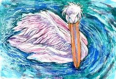 Great White Pelican-Postcards for the Lunch Bag (Life Imitates Doodles) Tags: pelican animal bird watercolor
