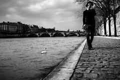 Paris (tomabenz) Tags: noiretblanc street bnw streetshot bw sony a7 urban people paris monochrome a7rm2 photography urbanexplorer zeiss streetview black white europe noir et blanc mono blackandwhite sonya7rm2 sonya7 streetphotography