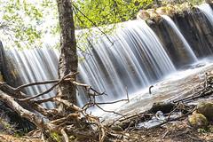 Suavemente (lebeauserge.es) Tags: rascafría madrid españa naturaleza árbol río agua catarata cascada