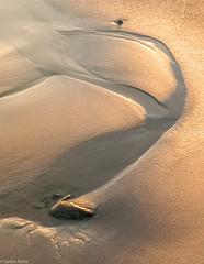Burnished sand (Donard850) Tags: northern ireland county down sand reflectedlight gold beach nikon d300