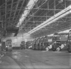 London transport Norbiton bus garage 1950's. (Ledlon89) Tags: rtbus buses aecregent rt lt lte londontransport londonbus londonbuses 1950s busgarage