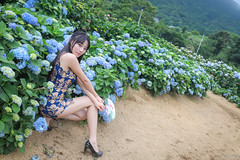 IMG_1651L (攝影玩家-明晏) Tags: outdoor pretty 人 人像 美女 辣妹 繡球花 高家繡球花 flower 女生 女孩 taiwan taipie 戶外 girl woman model 外拍 自然光