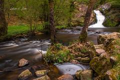 Gouloux (ludivine.dias) Tags: sautdegouloux gouloux nièvre bourgogne france waterfall cascade rivière ruisseau eau water nature forest foret