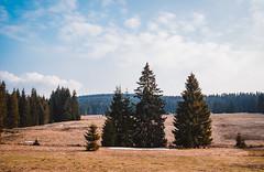 Z Krušných hor. (Robert Hájek) Tags: mountain nature landscape krusnehory krajina sky clouds czphoto czechrepublic sonya7iii sony samyang