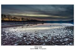 Silver lake (Ignacio Ferre) Tags: embalsedesantillana manzanareselreal madrid españa spain naturaleza nature landscape paisaje sunset puestadesol anochecer nikon lake lago silver