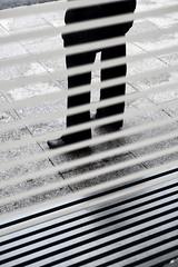 Lined (Guido Klumpe) Tags: candid street streetphotographer streetphotography strase hannover hanover germany deutschland city stadt streetphotographde unposed streetshot gebäude architecture architektur building perspektive perspective kontrast contrast gegenlicht shadow schatten silhouette minimal minimalism minimalistisch simple reduced spiegelung mirror reflection reflected geometry