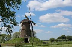 Nederland - Gelderland - Bronkhost -          De Bronkhorster Molen (@-Loes) Tags: molen mill