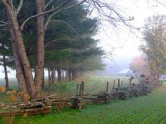Fence Line with Barn  HFF (Neal3K) Tags: georgia northgeorgia fog dillardga trees landscape happyfencefriday hff