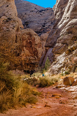 Capital Gorge Trail, Capital Reef National Park (aud.watson) Tags: america northamerica us usa utah waterpocketfold capitalgorgetrail canyon canyons mountain mountains sandstone limestone gorge desert capitolreefnationalpark