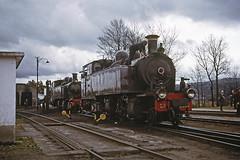CP E205 & 209, Chaves, 23 March 1974 (filhodaCP) Tags: comboiosdeportugal comboioavapor cp narrowgauge metregauge metergauge viametrica viaestreita caminhodeferro linhadocorgo steamlocomotive