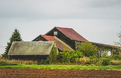Farm (lablue100) Tags: farm barns barn land tilling growing landscapes buildings nature colors food