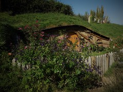 where a hobbit lives (SM Tham) Tags: newzealand northisland matamata hobbiton movieset filmset lotr lordoftherings thehobbit hobbit jrrtolkien farm hill green house home halfburied underground facade fence door windows garden shrubs plants flowers chimney clothesline clothes laundry