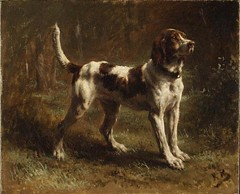 Rosa Bonheur (French, 1822–1899) A Limier Briquet Hound. MET NY (karadogansabri) Tags: cane chien dog hund perro