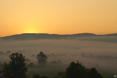 almost no thought—quantum of serenity (Aspenlaub (blattboldt)) Tags: morning mist nature early loxia2485sonnar carlzeiss loxia2485 emount sonyilce7rm3 alpha7riii sunrise 85mm 51695547 sonnar zeiss sony ilce7rm3 manualfocus manualiris manualexposure specialthankstochristophecasenaveandhisteamfromzeissfortheirpersonalinvolvementinthedevelopmentoftheloxialensline ⚶ laudātū berakhah בְּרָכָה manualwhitebalance topographic europe germany thuringia jena 無念