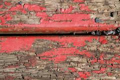 (dorothea knie) Tags: rot red holz wood abgeblättert faded makro macro