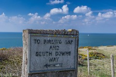 South Downs Way, East Sussex (safc1965) Tags: east sussex seven sisters south downs way walking hiking scenery landscape photography birling gap