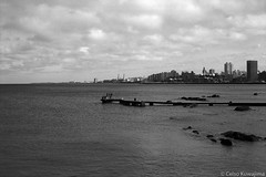 Punta Brava, Montevideo (Celso Kuwajima) Tags: cityview epsonv800 silverfastai 20190548 jetty sea fishing people ilfordpanfplus50 ocean outdoor analogphotography leicasummicroncollapsibleltm502 bw leicamp montevideo montevideodepartment uruguay