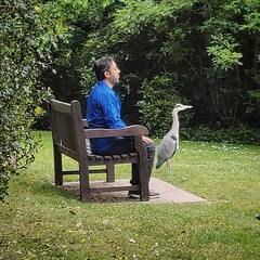 Just walking willow the whippet and passed this man. At one with the heron meditation.hummmm · · · · · #shadowhunters #meditation #jaceherondale #meditationspace #willherondale #meditations #clace #meditationtime #aleclightwood #meditationretreat #malec # (justin.photo.coe) Tags: ifttt instagram just walking willow whippet passed this man at one with heron meditationhummmm · shadowhunters meditation jaceherondale meditationspace willherondale meditations clace meditationtime aleclightwood meditationretreat malec meditationroom magnusbane meditationteacher meditationinmotion claryfray meditationmusic herondale meditationchallenge jemcarstairs meditationart simonlewis meditationspot isabellelightwood meditationsoul jacewayland meditationbeads