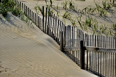 """Outer Banks Dunes (tvdflickr) Tags: """"thomasdriggersphotography"""" sand fence coast shore ocean df nikon dunes """"capehatterasnationalseashore"""" seagrass landscape photobythomasdriggers photobytomdriggers tvdimages"""