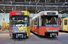 7427 88 (brossel 8260) Tags: belgique tec charleroi tram bn
