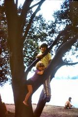 508_AndyKeithAug1972 (wrightfamilyarchive) Tags: andy keith wright 1972 1970s 70s seventies tree