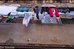 Hier wurde dreckige Wäsche gewaschen --- Here, dirty laundry was washed. (der Sekretär) Tags: fassade fenster gebäude haus hose hosen italien italy kleider kleidung kleidungsstück kleidungsstücke platz pullover stoff tshirt textilien venedig venice wäsche wäscheleine abgehauen abgeschlagen abhauen abschlagen alt building clothes clothesline clothing cutoff fabrics facade façade front gewaschen house jumper laundry line old publicplace square trousers waschen washing window windows