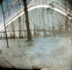 Three Months in the Winter at Spot Pond (LowerDarnley) Tags: solargraph solargraphy pinhole plasticfilmcan paperneg woods winter baretrees middlesexfellsreservation spotpond snow suntrail longexposure tinypapernegative handmadepinhole